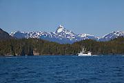 Salmon fishing boat, Sitka, Alaska