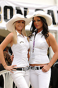 Jim Beam promo girls in action during race two at the HAMILTON 400, New Zealand, Sunday, 19th April 2009. Photo: Andrew Bright/PHOTOSPORT