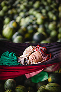 A baby sleeping in a hammock in their parents' watermelon market stall, Kampong Chhnang, Tonle Sap, Cambodia
