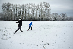 © Licensed to London News Pictures. 17.01.16London, UK. As snow hit the south east of the UK overnight a family enjoys a snowball fight in  a park in Shenley, Hertfordshire.. Photo credit : Simon Jacobs/LNP