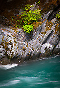 """The Quinault River is a 69-mile (111 km) long[2] river located on the Olympic Peninsula in the U.S. state of Washington. It originates deep in the Olympic Mountains in the Olympic National Park. It flows southwest through the """"Enchanted Valley""""."""