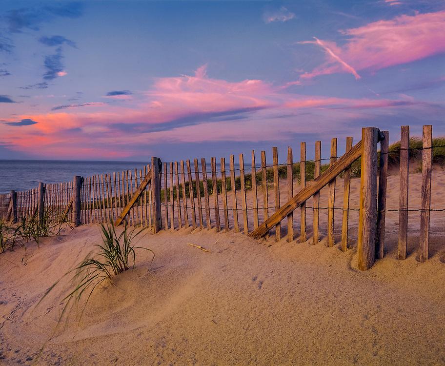 Drift fence & dune grass, pm light, Race Point Beach, Provincetown, MA