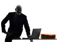 One Caucasian Senior Business Man computing Silhouette White Background