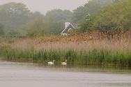 New York, Southampton, Lake Agawam