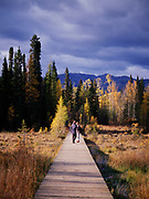 Visitors hiking boardwalk at Liard River Hot Springs Provincial Park, northern British Columbia, Canada.