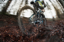 Low section of mountain biker biking in a forest, Bavaria, Germany