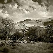 Surreal Prehistoric Landscape - Central Coast off the 101