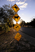 Road sign informing drivest that there are kangaroos on or near the road; there are cattle on or near the road; bobtail goannas cross the road; and snakes are protected. Perth, Western Australia
