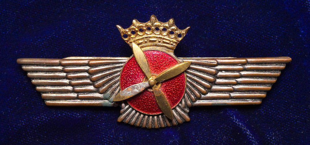 WWII Spanish pilot wings.  Private collection.