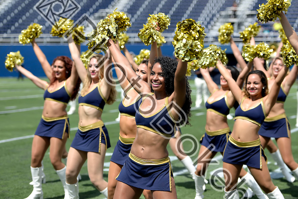 2015 October 10 - FIU's Golden Dazzlers performing at the Ocean Bank Field, Miami, Florida. (Photo by: Alex J. Hernandez / photobokeh.com) This image is copyright by PhotoBokeh.com and may not be reproduced or retransmitted without express written consent of PhotoBokeh.com. ©2015 PhotoBokeh.com - All Rights Reserved