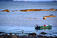 Low tide on Penobscot Bay with a heron and a small boat, rocks and islands in the distance.