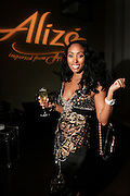 """Michele Murray, Alize Brand Director, at The Ludacris Foundation 5th Annual Benefit Dinner & Casino Night sponsored by Alize, held at The Foundry at Puritan Mill in Atlanta, Ga on May 15, 2008.. Chris """"Ludacris"""" Bridges, William Engram and Chaka Zulu were the inspiration for the development of The Ludacris Foundation (TLF). The foundation is based on the principles Ludacris learned at an early age: self-esteem, spirituality, communication, education, leadership, goal setting, physical activity and community service. Officially established in December of 2001, The Ludacris Foundation was created to make a difference in the lives of youth. These men have illustrated their deep-rooted tradition of community service, which has broadened with their celebrity status. The Ludacris Foundation is committed to helping youth help themselves."""