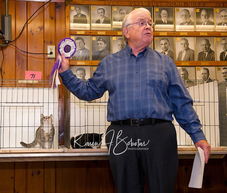 Cat Show at the Laconia VFW Hall.  (Karen Bobotas Photographer)