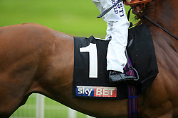 Detail of the Horse number on the saddle