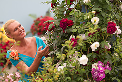 © Licensed to London News Pictures. 08/07/2013. London, UK. A model looks at roses in the 'Roses and Floristry Vintage Festival' at the press view for the Royal Horticultural Society's Hampton Court Palace Flower Show today (08/07/2013). Photo credit: Matt Cetti-Roberts/LNP