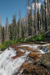 Virginia Creek Cascades, Glacier National Park, Montana, US