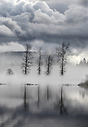 In the Snoqualmie Valley near Fall City, The fog lifts to reveal a landscape covered with water from the flooding Snoqualmie River. (Steve Ringman / The Seattle Times)