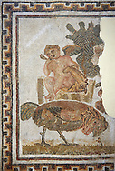 Picture of a Roman mosaics design depicting the cupid owner of a cockerell at a cock fight, from the ancient Roman city of Thysdrus. 2nd half of the 2nd century AD, House of Tertulla. El Djem Archaeological Museum, El Djem, Tunisia. .<br /> <br /> If you prefer to buy from our ALAMY PHOTO LIBRARY Collection visit : https://www.alamy.com/portfolio/paul-williams-funkystock/roman-mosaic.html . Type - El Djem - into the LOWER SEARCH WITHIN GALLERY box. Refine search by adding background colour, place, museum etc<br /> <br /> Visit our ROMAN MOSAIC PHOTO COLLECTIONS for more photos to download as wall art prints https://funkystock.photoshelter.com/gallery-collection/Roman-Mosaics-Art-Pictures-Images/C0000LcfNel7FpLI