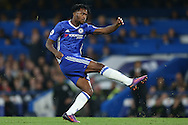 Michy Batshuayi of Chelsea in action. Premier league match, Chelsea v Manchester Utd at Stamford Bridge in London on Sunday 23rd October 2016.<br /> pic by John Patrick Fletcher, Andrew Orchard sports photography.