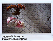 A teddy bear is placed in a chain link fence for Jeanine Dowell, 32-year-old, and Juliet Washington, 41-year-old, in the 5400 block of South Wabash in Chicago, in this photo taken June, 29, 2017. Both women were killed from multiple gunshot wounds while driving in a car on June 28, 2017.