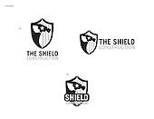 The Shield Concept