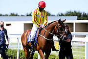 Toptime ridden by Richard Kingscote trained by Rod Millman - Mandatory by-line: Robbie Stephenson/JMP - 22/07/2020 - HORSE RACING - Bath Racecoure - Bath, England - Bath Races
