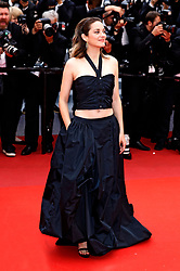 attending the 'La belle époque' premiere during the 72nd Cannes Film Festival at the Palais des Festivals. 20 May 2019 Pictured: Marion Cotillard. Photo credit: MEGA TheMegaAgency.com +1 888 505 6342