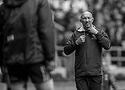 "Twickenham, Surrey United Kingdom. USA, Sevens, Coaching staff,  Phil GREENING, at the<br /> ""2017 HSBC London Rugby Sevens"",  Saturday 20/05/2017 RFU. Twickenham Stadium, England    <br /> <br /> [Mandatory Credit Peter SPURRIER/Intersport Images]"