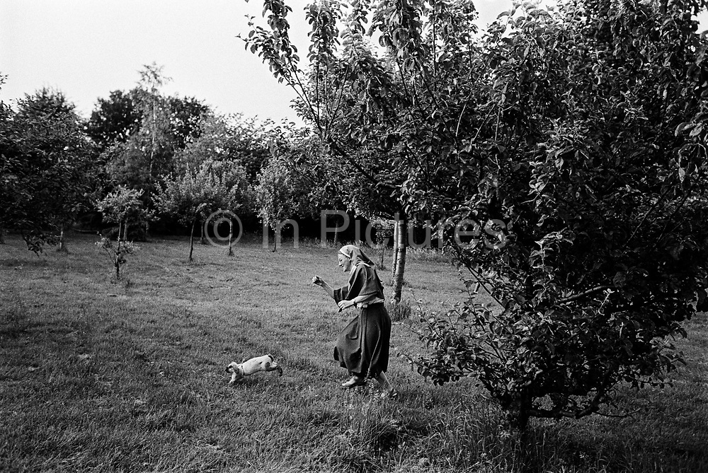 A nun chasing a rabbit in the gardens of St Michael's Convent, Ham.Richmond, Surrey. England