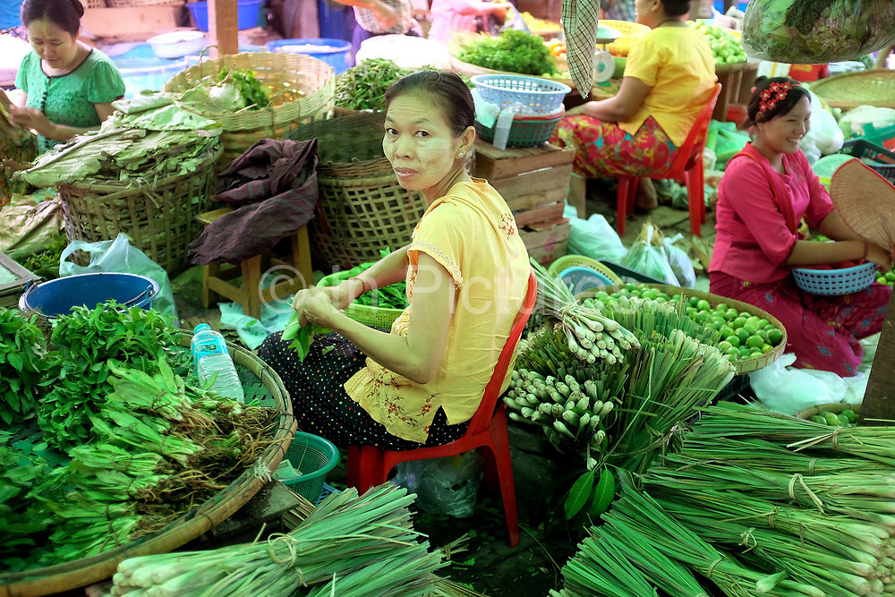 A vegetable seller at Danyingone market on 16th May 2016 in Yangon, Myanmar.  A large variety of local products are available for sale in fresh markets all over Yangon, all being sold on small individual stalls