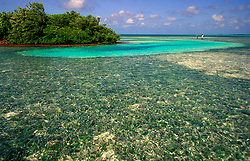 Two people fly-fishing for bonefish in shallow water near beach in Calabash Caye, Belize.