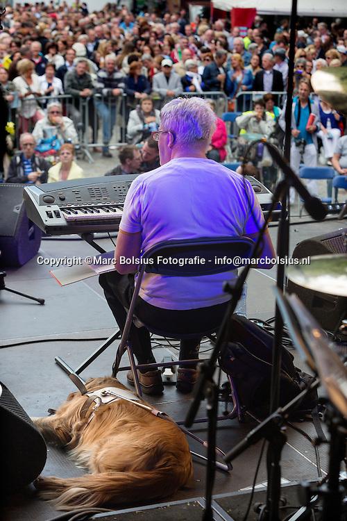 Nederland,  blinde muzikant en jurist Sjef van Rooij