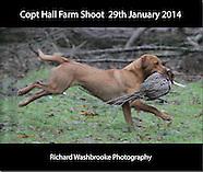 Copt Hall Farm Shoot  29th January 2014
