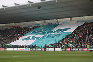 Home Park Flag during the EFL Sky Bet League 1 match between Plymouth Argyle and Rochdale at Home Park, Plymouth, England on 23 February 2019.