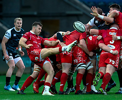Gareth Davies of Scarlets puts up a box kick<br /> <br /> Photographer Simon King/Replay Images<br /> <br /> Guinness PRO14 Round 11 - Ospreys v Scarlets - Saturday 22nd December 2018 - Liberty Stadium - Swansea<br /> <br /> World Copyright © Replay Images . All rights reserved. info@replayimages.co.uk - http://replayimages.co.uk