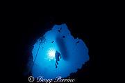 diver descends into Angelfish Blue Hole<br /> off Georgetown, Exuma, Bahamas,<br /> ( Western Atlantic Ocean ) <br /> diver descends into Angelfish Blue Hole<br /> off Georgetown, Exuma, Bahamas,<br /> ( Western Atlantic Ocean )