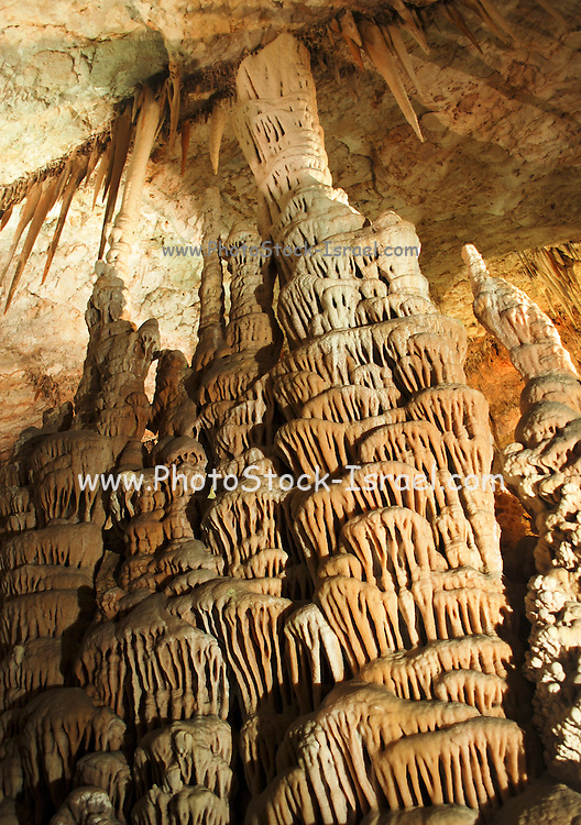 Cave coral at the Soreq Stalactite Cave Nature Reserve (also called Avshalom Cave) 82-meter-long, 60-meter-wide cave is on the western slopes of the Judean Hills outside the city of Beit Shemesh.