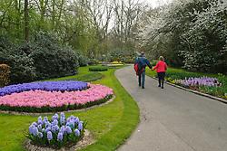 Keukenhof, bloembollen, flowerbulbs, tulips, Lisse, Holland