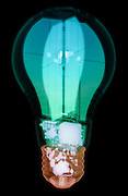 X-ray of an energy efficient light bulb. This bulb uses Light emmitting diode (LED) technology.