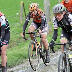 29-02-2020: Wielrennen: Omloop Nieuwsblad: Ninove: Jip van den Bos