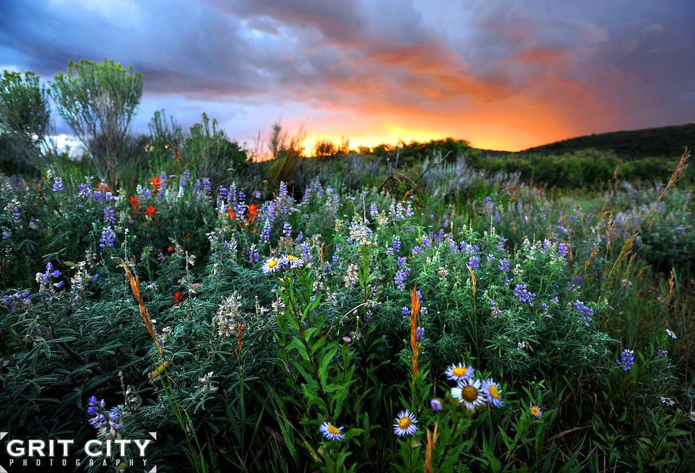 Colorado Mesa Verde National Park sunset.