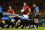 Gareth Davies of Wales looks on ahead of a scrum. Rugby World Cup 2015 pool A match, Wales v Uruguay at the Millennium Stadium in Cardiff, South Wales  on Sunday 20th September 2015.<br /> pic by  Andrew Orchard, Andrew Orchard sports photography.