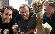 """30/09/2019 Repro free:  Dave Cunningham, Portershed,  Alpaca """"Eurythmics"""" , Andrew Downes, Video Sherpa, Alpaca """"Ear to the Ground"""" and Anthony Shaugnessy Portershed. The  Alpacas from Farmyard in your School yard who paid a visit to the Portershed. Photo:Andrew Downes, xposure.ie"""