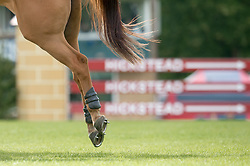 Duffin Douglas (GBR) - Why Me II<br /> Speed Class<br /> International Horse Show - Hickstead 2014<br /> © Hippo Foto - Jon Stroud