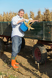 Farmer dumping corn from bucket into his tractor, Bavaria, Germany