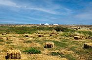 Hay Bales and Salt Mounds near Santa Luzia, Tavira, Portugal