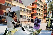 Fotografías de las nueve personas y mascotas que murieron durante el sismo son mostradas en la Unidad Habitacional Tlalpan el 19 de octubre de 2017 // Pictures of the 9 people and pets who died during the earthquake are shown near Unidad Habitacional Tlalpan on October 19th, 2017. (Prometeo Lucero)
