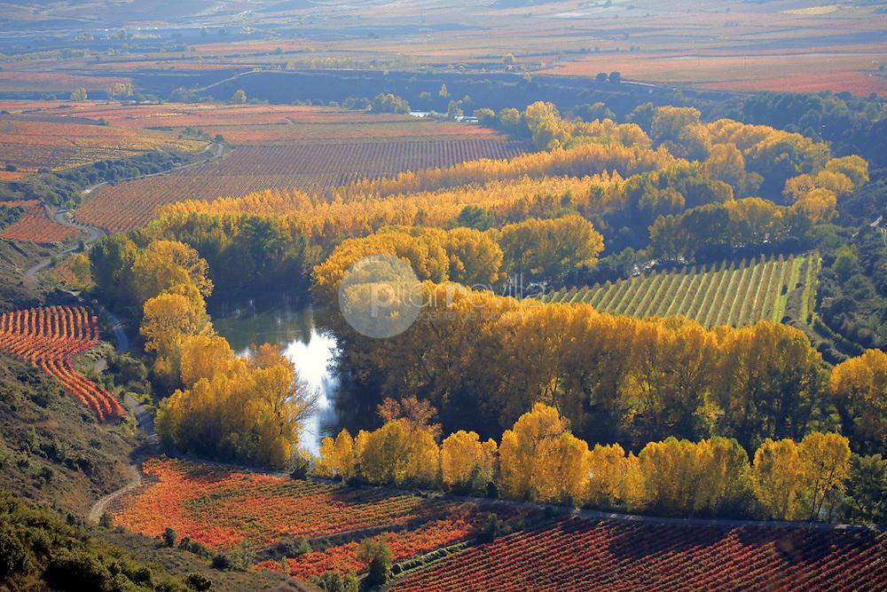 Meandro rio Ebro. Fuenmayor. La Rioja ©Daniel Acevedo / PILAR REVILLA