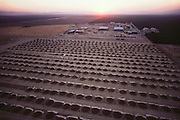 An aerial photograph of mounds of harvested almonds at sunrise.  The almonds must dry in the sun for a few days before they are ready for packaging and shipping. Kern County, California. USA.