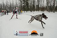 Wild side of the Noque - Skijor - Fatbike - Snowshoe
